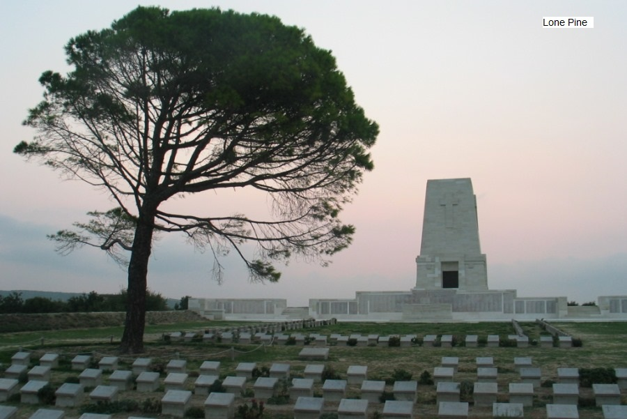 Lone Pine Gallipoli where Alf rests in peace